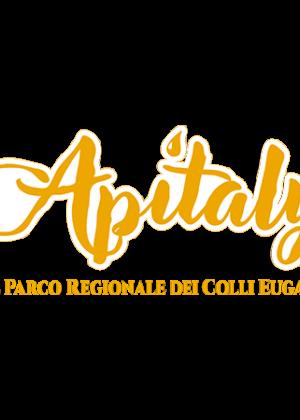 Logo Apitaly